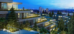 green_roofs